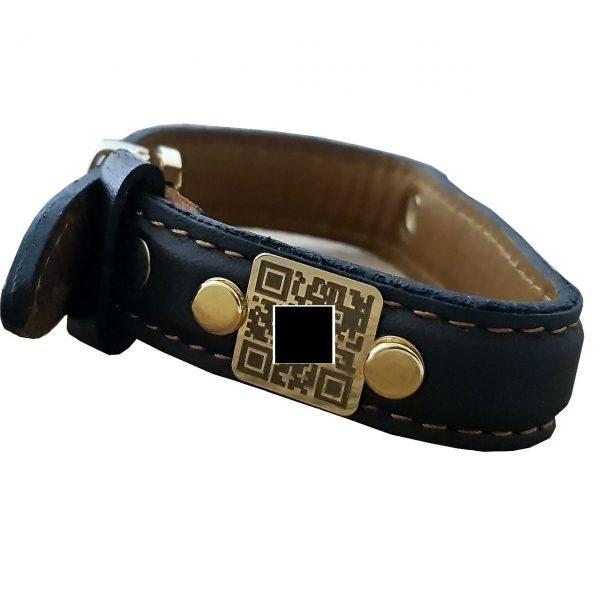 دستبند گویا (سخنگو) گیوی گراف مدل Givi624
